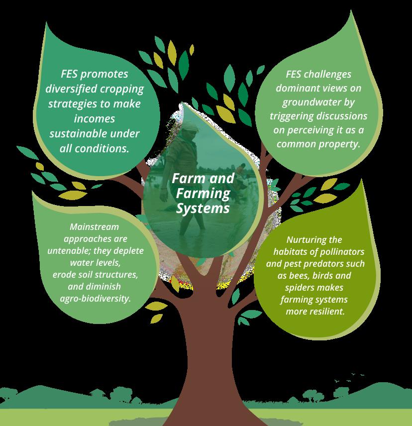 Farm and Farming Systems